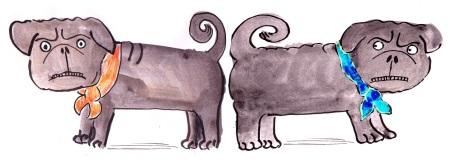 grumpy pug brothers sample