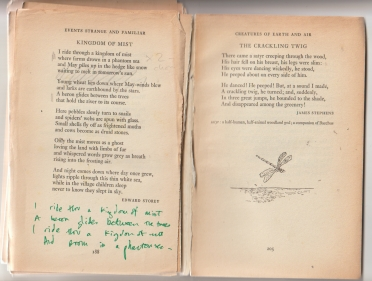 Kingdom of Mist