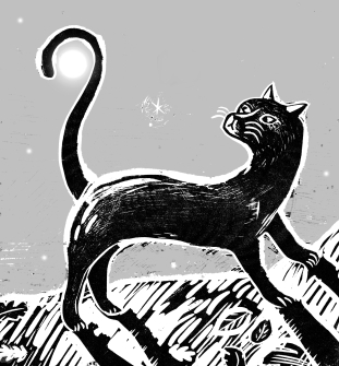 The Cat and the moon detail